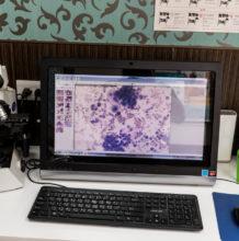 高倍率顯微鏡與即時影像系統